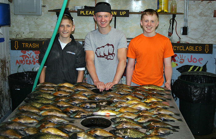 Sunfish and Crappies caught right off the docks!